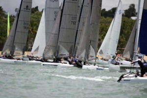 Nacra's do well at Cat Challenge